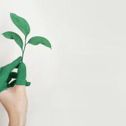 """Стартира кандидатстването за Националният конкурс """"Най-зелените компании в България""""!"""
